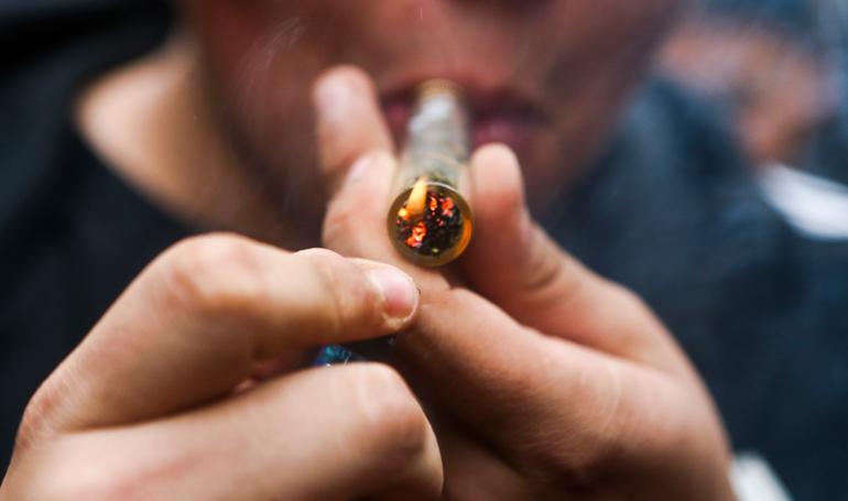 """""""Marihuana"""" fuente de la juventud"""